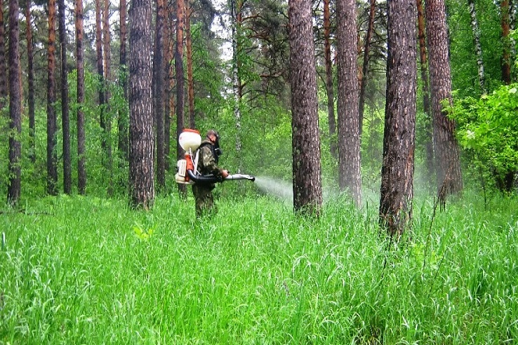 Обработка от клещей лесных массивов в Стерлитамаке